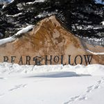 Bear Hollow Neighborhood Spotlight