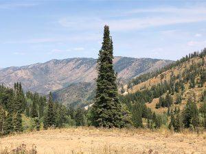 powder-mountain-fall-views
